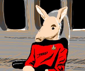 Picaardvark