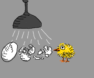 Make an egg hatch, PIO! (it's almost ready)