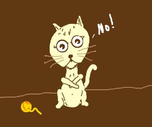 """A cute cat say """"no"""""""