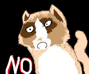 Doge morphs into grumpy cat.