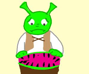shrek regrets seeing if he made of watermelon