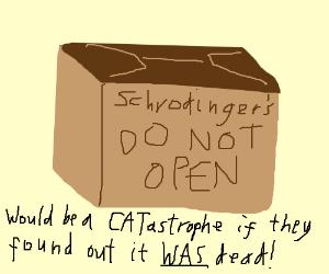 schrodinger makes a cat pun. Also murders cats