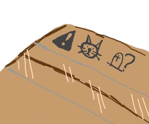 Schrodinger's cat STILL in box! Live or dead?