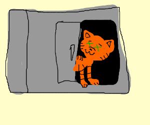 Schrodinger's Cat.