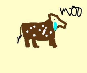 sad brown cow