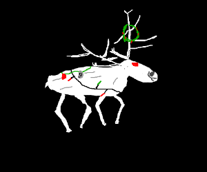 Albino Reindeer Decorated for Christmas