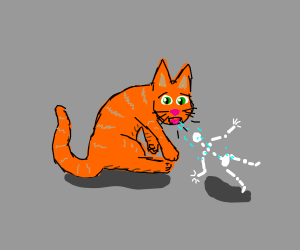 Orange cat spits out a human skeleton.