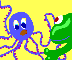 An octopus and a frog