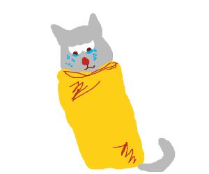 crying borito cat