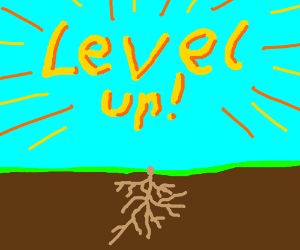 Level Up! You're a root now!
