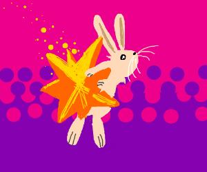 Star Bunny :3