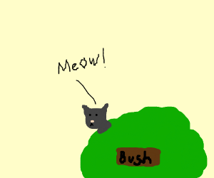 Cat Meowing Down The Right Shrub