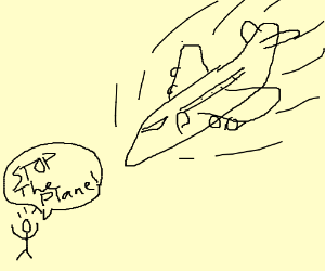 man says stop the plane
