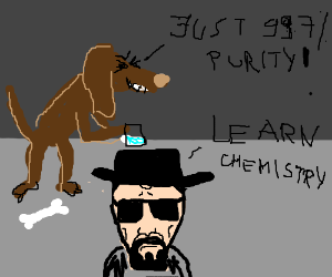 Dog is angry at walter white