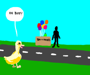 The duck will cross the road to buy balloons