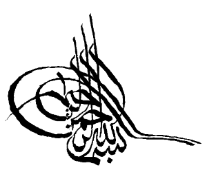 Arabic writing in attempts the 4th dimension