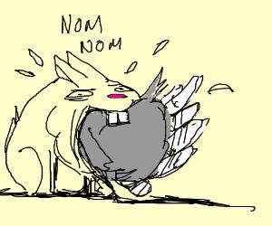 Rabbit eating turkey