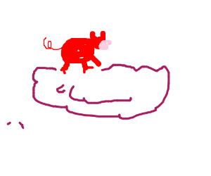 pig on a cloud