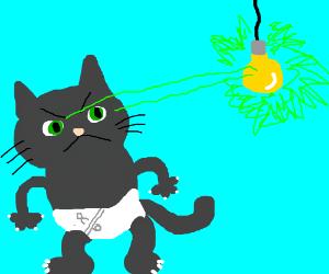 cat in diaper lasers light bulb