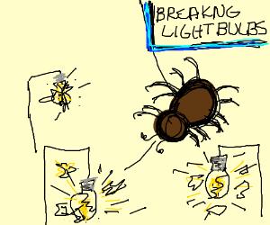 brown spider broke all the lightbulbs
