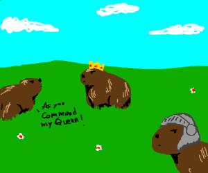 Queen of the Capybaras