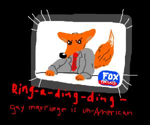 Fox on Fox!
