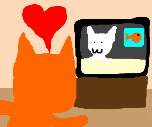 kitty falls in love with a cat tv presenter
