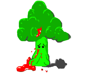 Bleeding broccoli