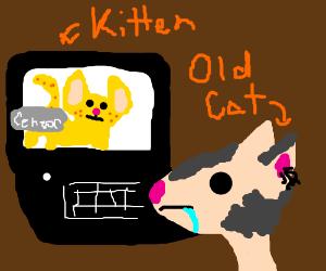 videochatcats in love