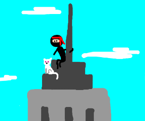 A ninja & his albino cat on the Empire State