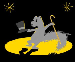 Grey Squirrel finally makes it in showbiz