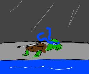 Teenage Mutant Ninja Turtles never mutated