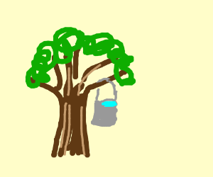 a bucket of water hanging from a tree limb