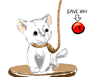 "Press ""plus 1 button"" to save the white kitten"