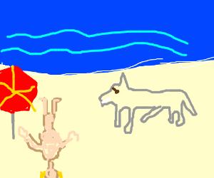 A donkey is terrorising a typical beach scene.