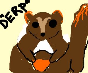 derpy squirrel