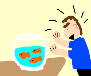 man stares angrily at untied goldfish