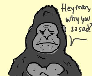 Gorilla notices you are upset