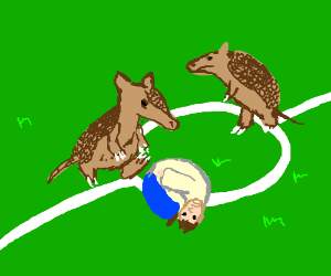 Armadillos playing with human-ball