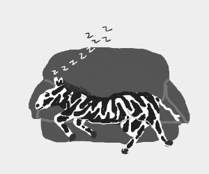 Zebra reclining on a couch, sleeping