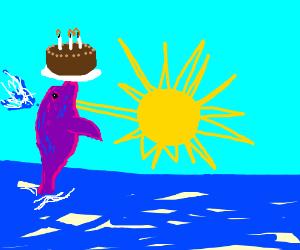 Happy birthday, purple dolphin!