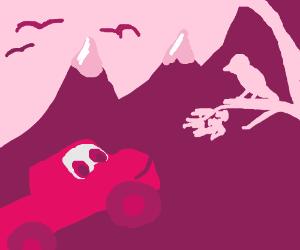 Dodge ram truck watching birds & mountains