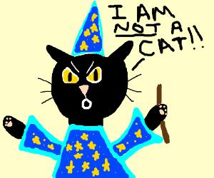 Cat wizard is in denial