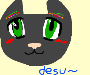 A cat with rainbow eyebrows and anime eyes
