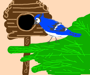A blue bird in a hut.