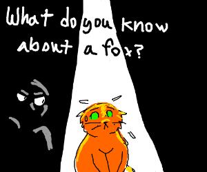 Man interrogating cats about fox