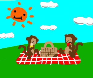 Monkeys having a picnic