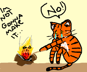 Campfire dying infront of a very upset Tiger