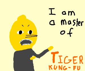 lemonhead is a master of tiger kung fu