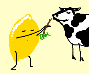 Lemon with legs and arms gives stick to cow.
